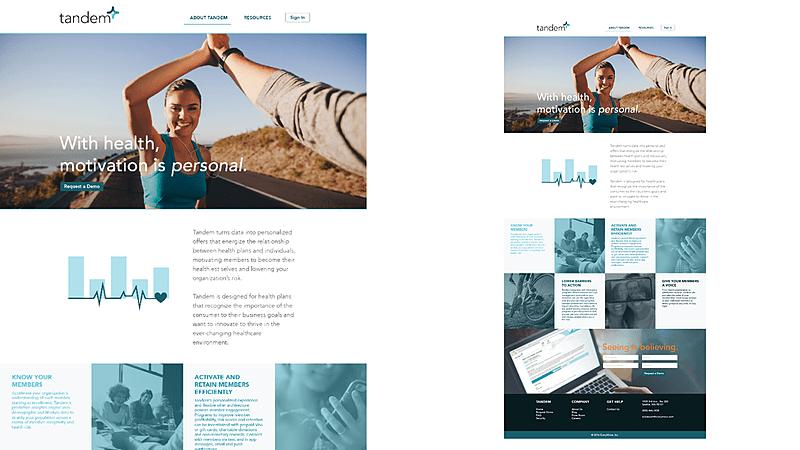portfolio-web-3